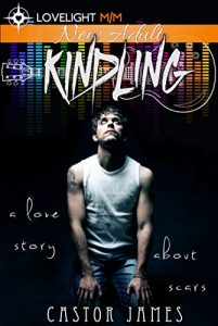 Book Cover: Kindling