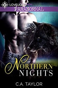 Book Cover: Northern Nights