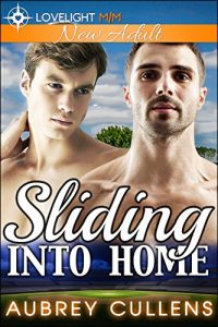 Book Cover: Sliding Into Home