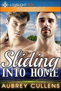 Book Cover: Sliding Into Home