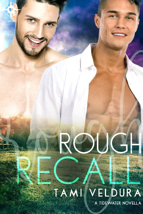 Book Cover: Rough Recall