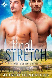 Book Cover: Final Stretch