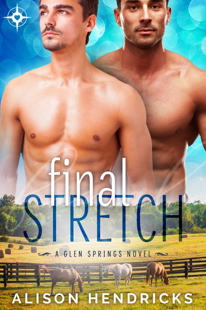 Book Cover: Final Stretch
