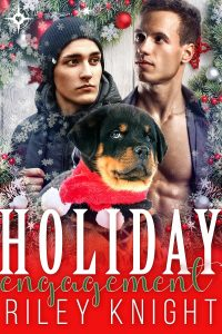 Book Cover: Holiday Engagement