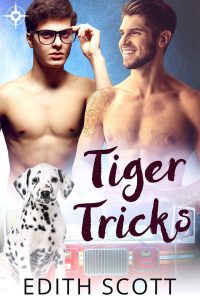 Book Cover: Tiger Tricks