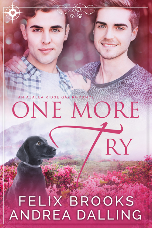 Book Cover: One More Try