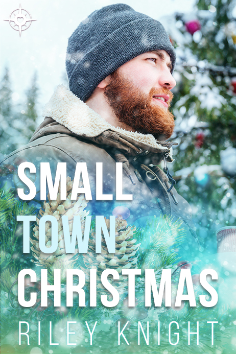 Book Cover: Small Town Christmas