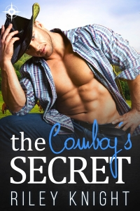 Book Cover: The Cowboy's Secret
