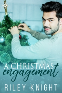 Book Cover: A Christmas Engagement